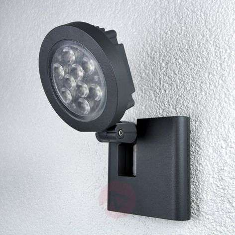 LED outdoor spotlight with 9 Power LEDs, anth