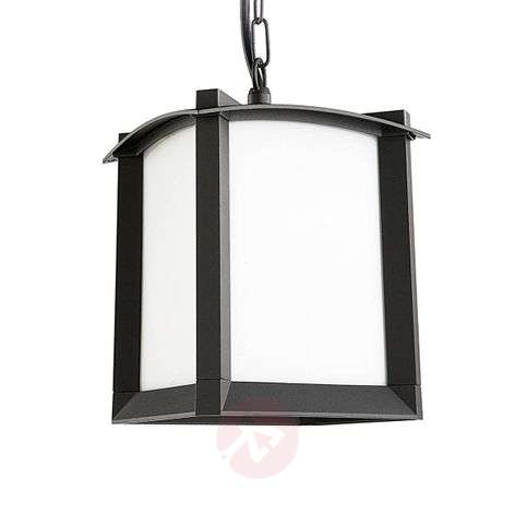 Mark classic outdoor hanging light