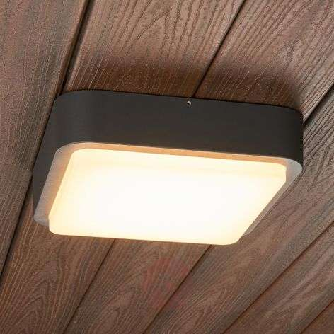 Maxine a rounded outdoor wall light with LEDs-9955003-32