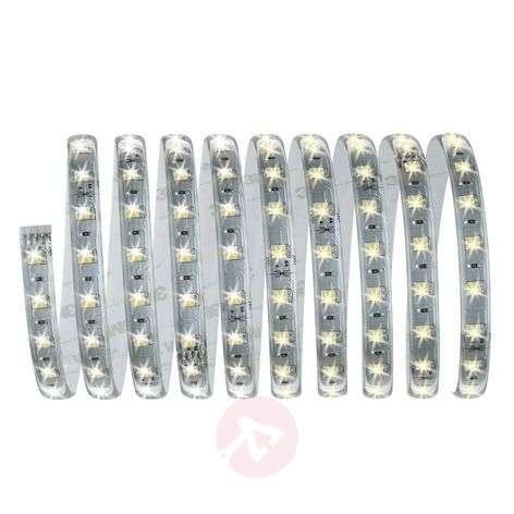 MaxLED basic LED strip set 300 cm white adjustable