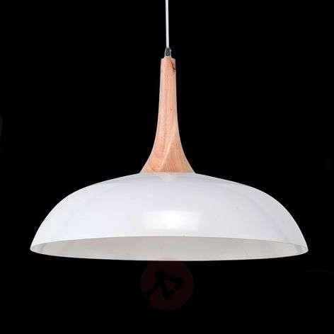 Metal hanging light Hood with wood element