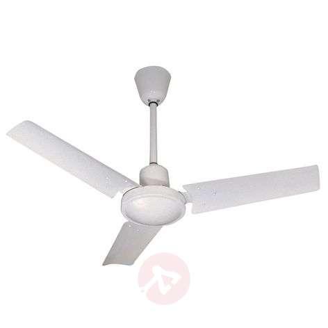 MINI INDUS Small Modern Ceiling Fan