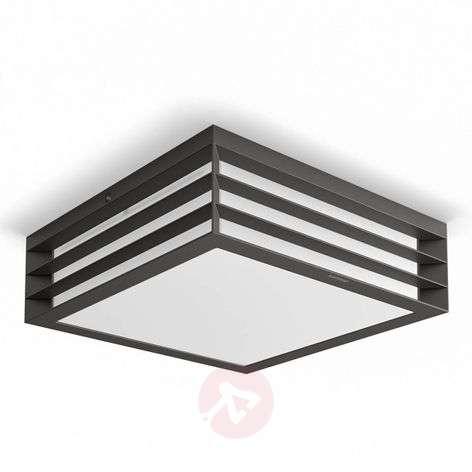 Moonshine myGarden ceiling light for outdoors