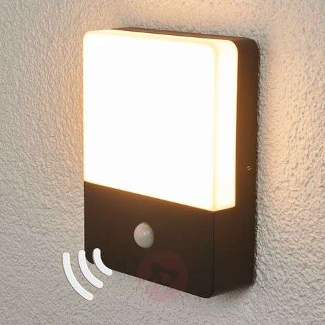 Motion detector wall lamp Annu with LEDs