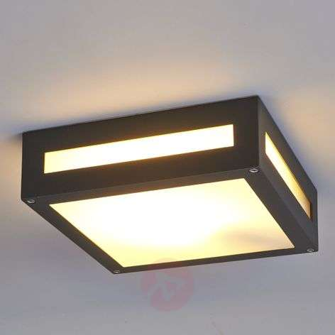 Nerea rectangular outdoor ceiling light