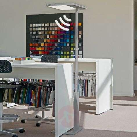 Office floor lamp Linea-F with sensor, grey