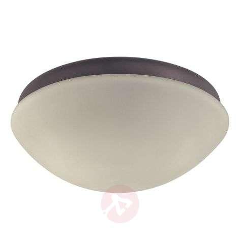 Outdoor light for Hunter ceiling fans