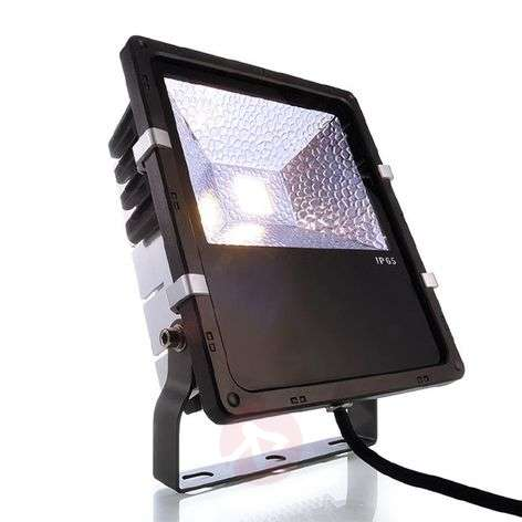 Outdoor spotlight Flood with 50 W LED, 6,000 K