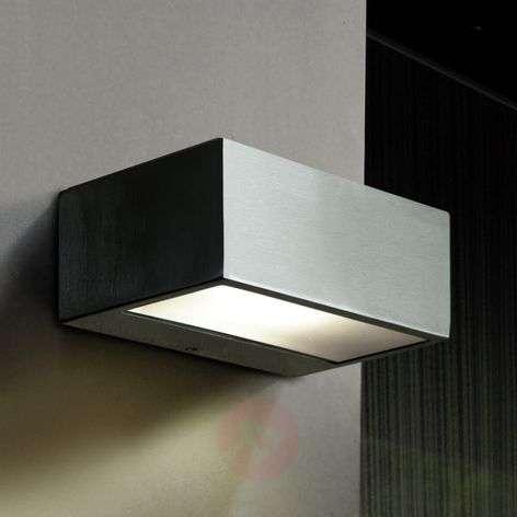 Outdoor wall light Nemesis, stainless steel