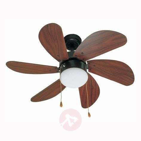 PALAO Dark Brown Ceiling Fan