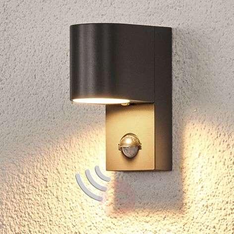 Palina outdoor wall light, motion detector