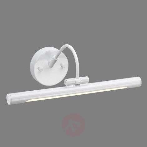 Pivotable LED picture light Alton