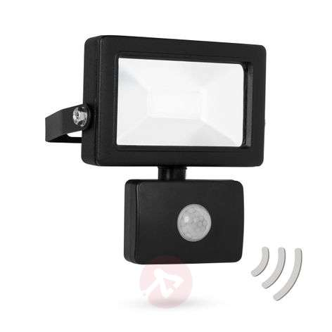 Powerful Secure LED outdoor spotlight with sensor