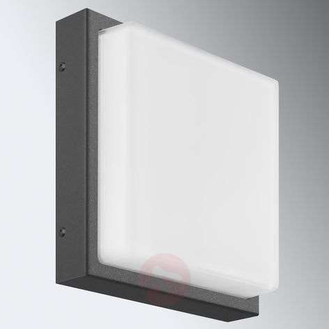 Rectangular outdoor wall light Ernest in graphite
