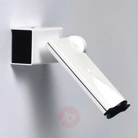 Rotatable/pivotable LED wall spotlight Bessons