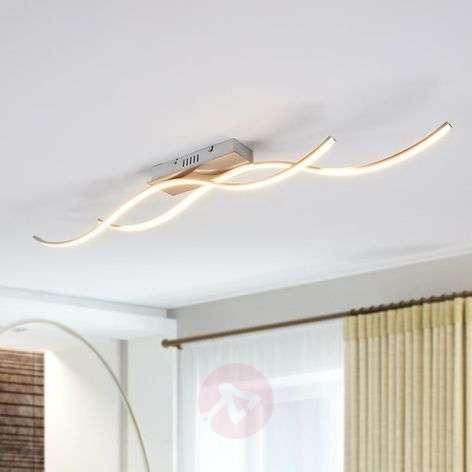 Safia curved LED ceiling light, two-bulb