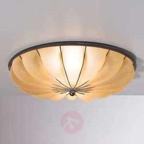 Semi-circular RAGGIO ceiling light