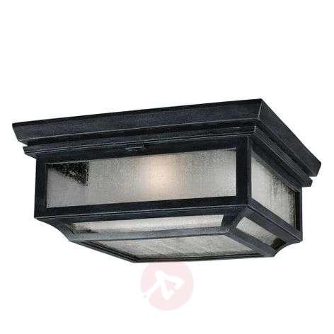 Shepherd ceiling light for outdoors