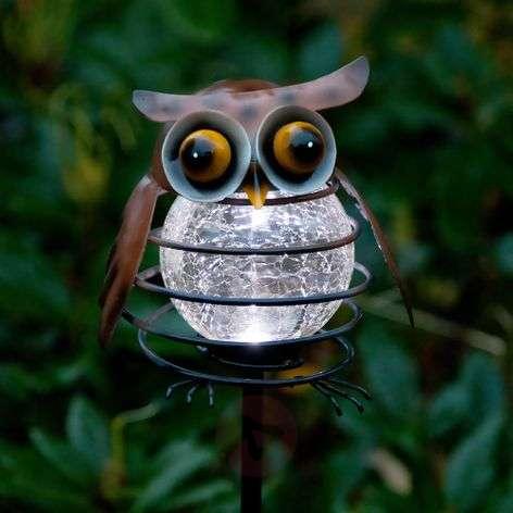Solar garden sticker Sicily Owl