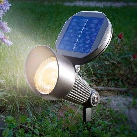 Solar light Spotlight with warm white LED lighting-3012543-31