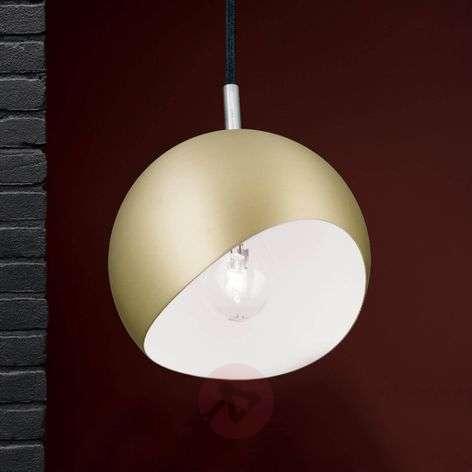 Spherical pendant light Bowl