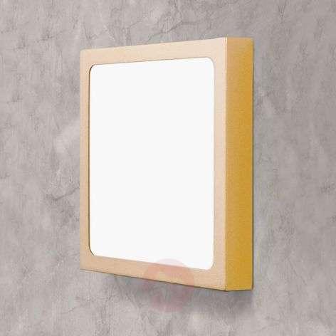 Square LED ceiling light Vika