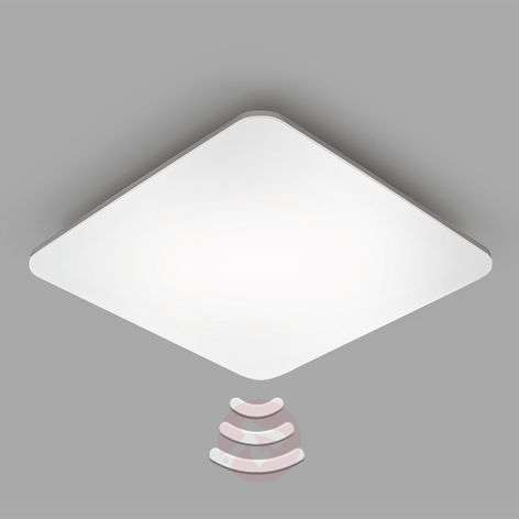 STEINEL RS Pro LED Q1 HF sensor ceiling light
