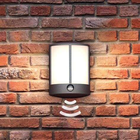 Stock LED outdoor wall light with sensor-7531806-31