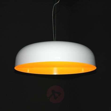 Stylish hanging light Canopy