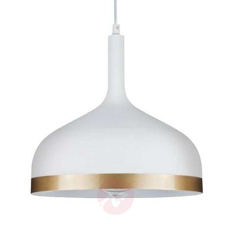 Stylish pendant light Embla-7601036-31