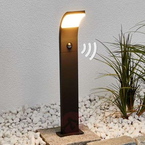 Timm - LED path light with motion detector, 60 cm