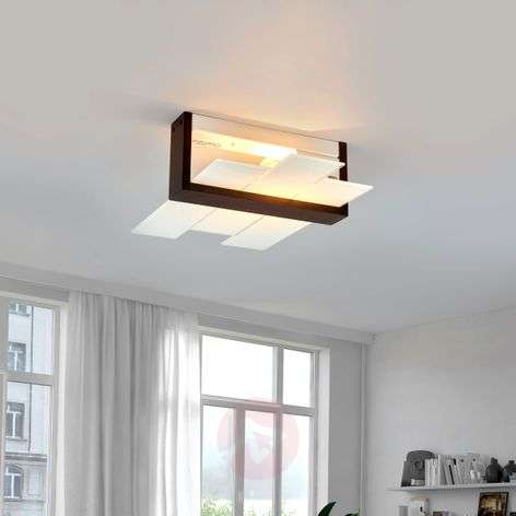 TRIAD - attractive wall and ceiling light
