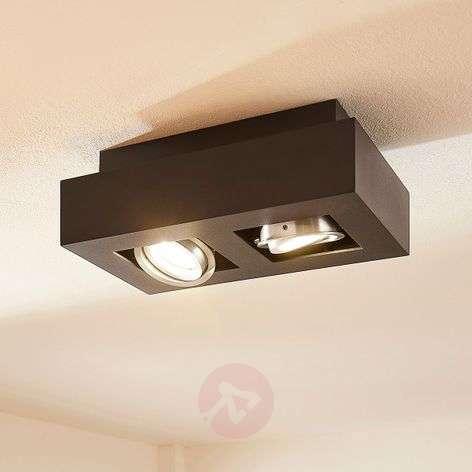 Two-bulb LED ceiling light Vince in black