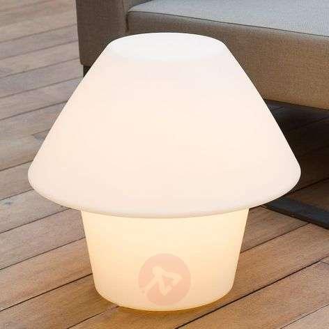 Versus Completely Illum. Exterior Decorative Lamp
