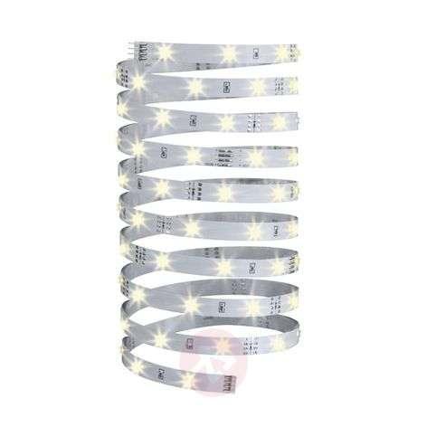 Warm white LED strip YourLED Eco 5 m, white