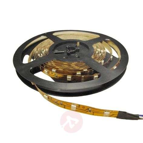 Warm White Power LED Strip 930