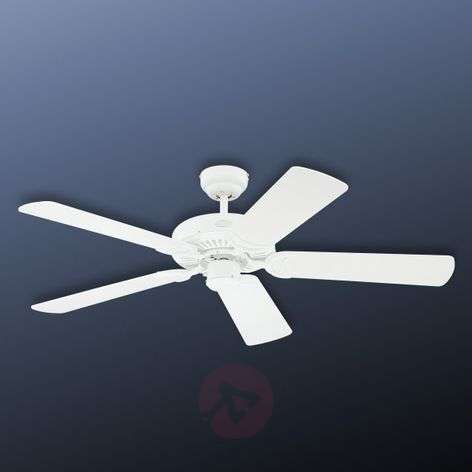 White Monarch ceiling fan-9602267-31