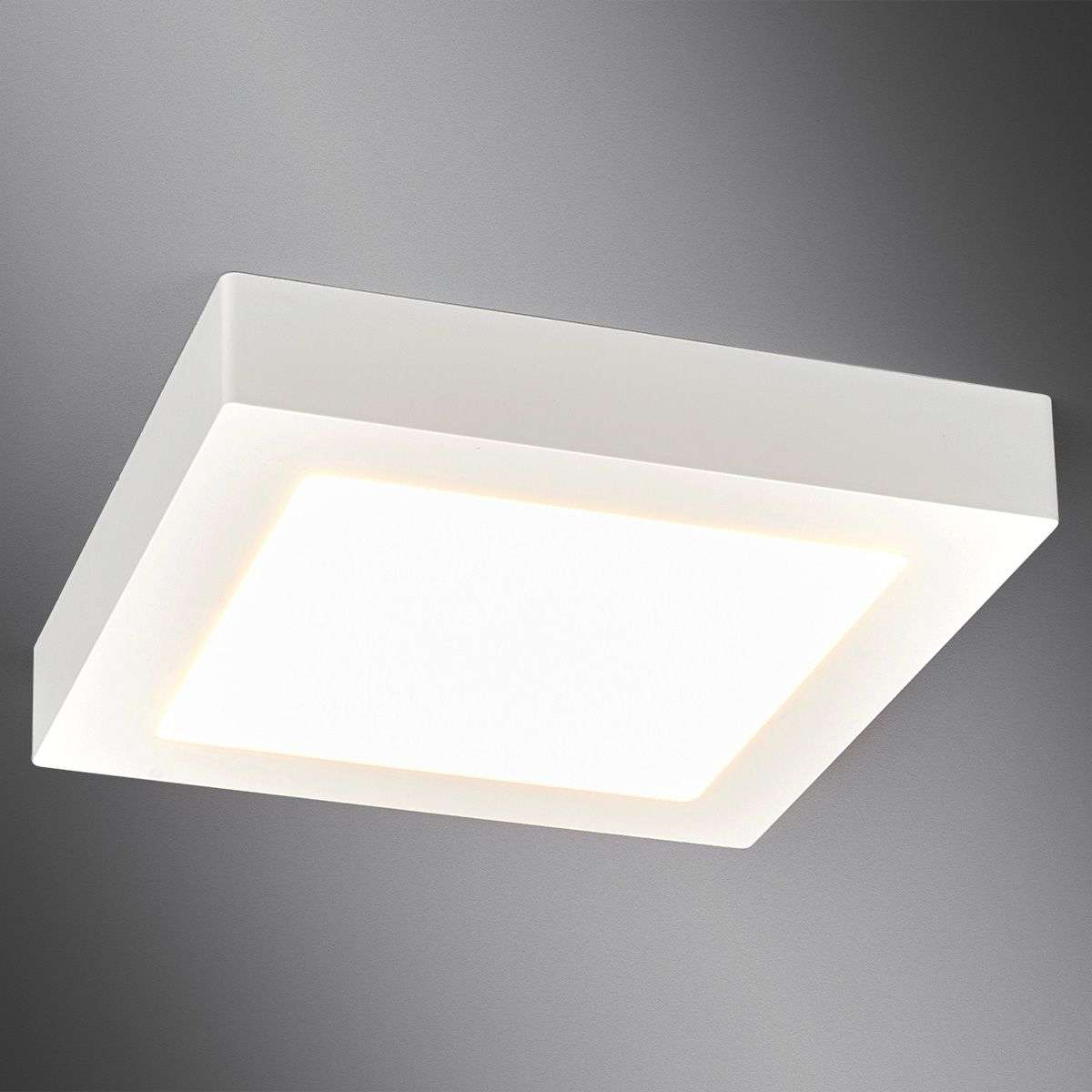 White, square LED bathroom ceiling light Rayan | Lights.ie